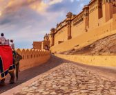 Golden Triangle: The Best of India